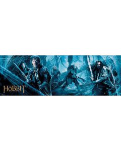 The Hobbit: The Desolation of Smaug - Door Poster