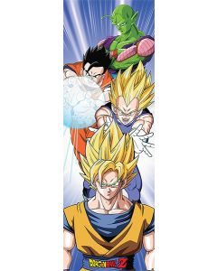 Dragonball Z - Door Poster
