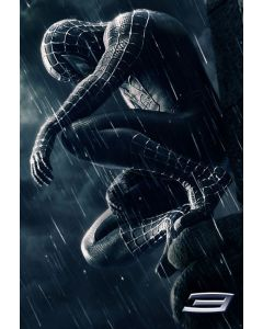 Spider-Man 3 - Movie Poster Set