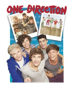 One Direction - 3D Music Poster