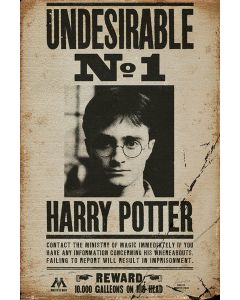 Harry Potter - Movie Poster