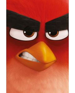 Angry Birds - Movie Poster