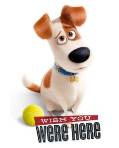 The Secret Life Of Pets - Movie Poster