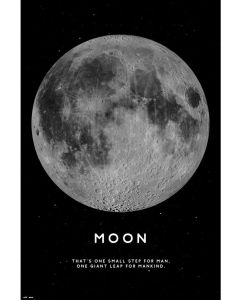The Moon - Poster