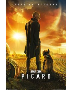 Star Trek: Picard - TV Show Poster