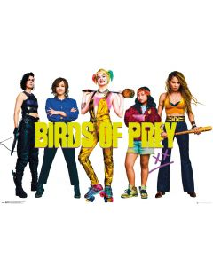 Birds Of Prey - Movie Poster